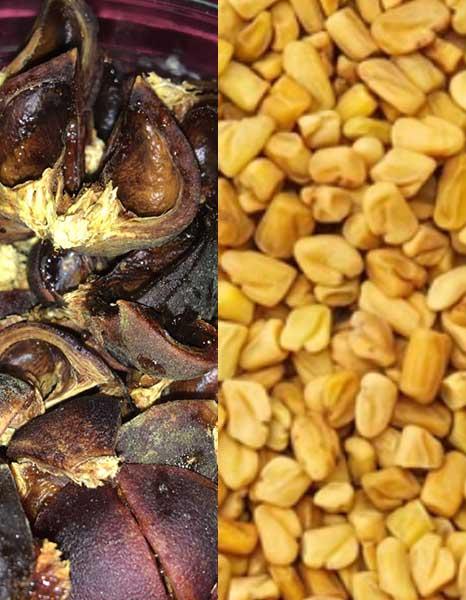 fenugreek and goron tula can treat malaria