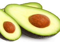Avocado seed for hypertension treatment