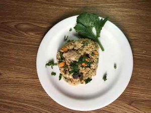 rolled oats meal