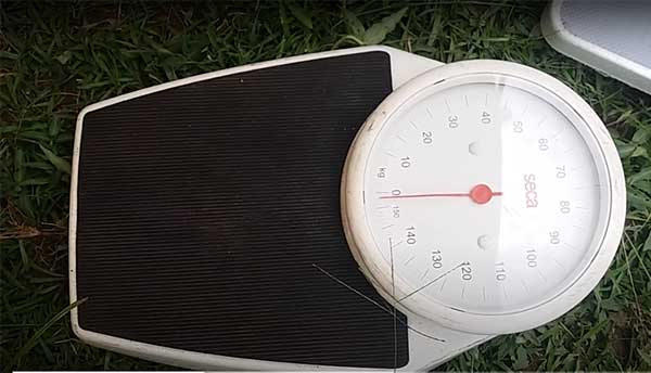 How to know your BMI