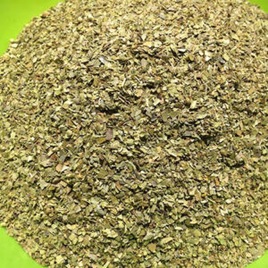 oregano as antibiotic
