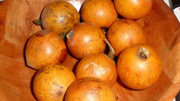 agbalumo side effects and health benefits