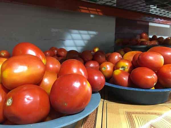 tomato stew alternative